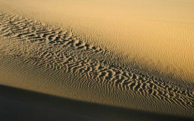 Erg, azaz homoksivatag